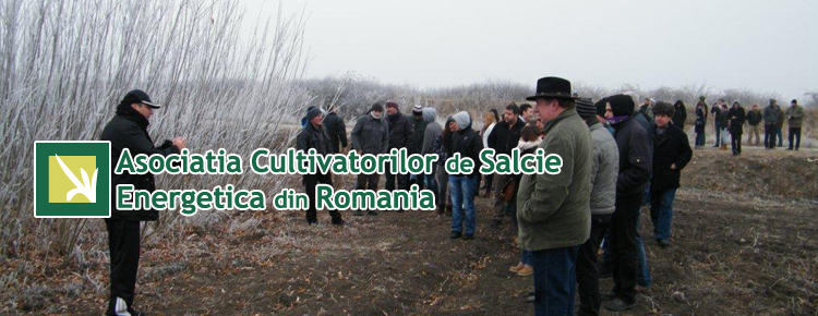 Asociatia Cultivatorilor de Salcie Energetica