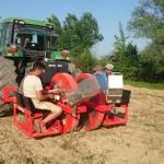 Plantare mecanizata butasi salcie energetica